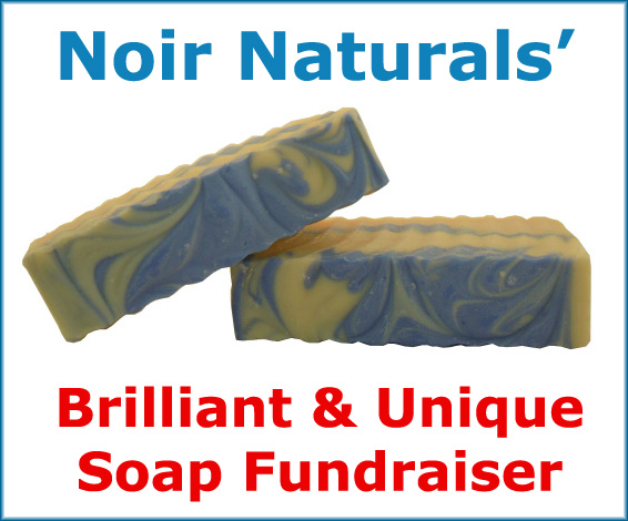 Looking for a unique, earth-friendly, and profitable fundraising idea? Then this Noir Naturals Soap Fundraiser is one to definitely check out!