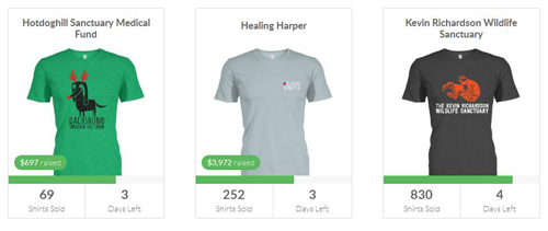 An Online T Shirt Fundraiser is currently one the most popular and successful fundraisers that you can use.