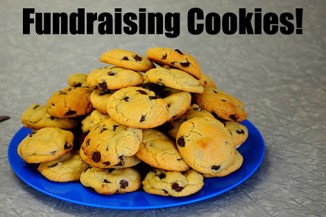 Here's how to fundraise with Fundraising Cookies. Perfect for Bake Sales and other Events! (Photo by Brian Richardson / Flickr)