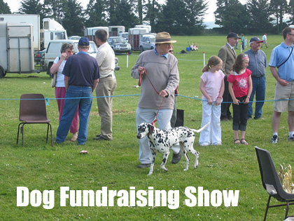 A Dog Fundraising Show is a fun event that has great fundraising potential. (Photo by Conor O'Neill / Flickr.com)