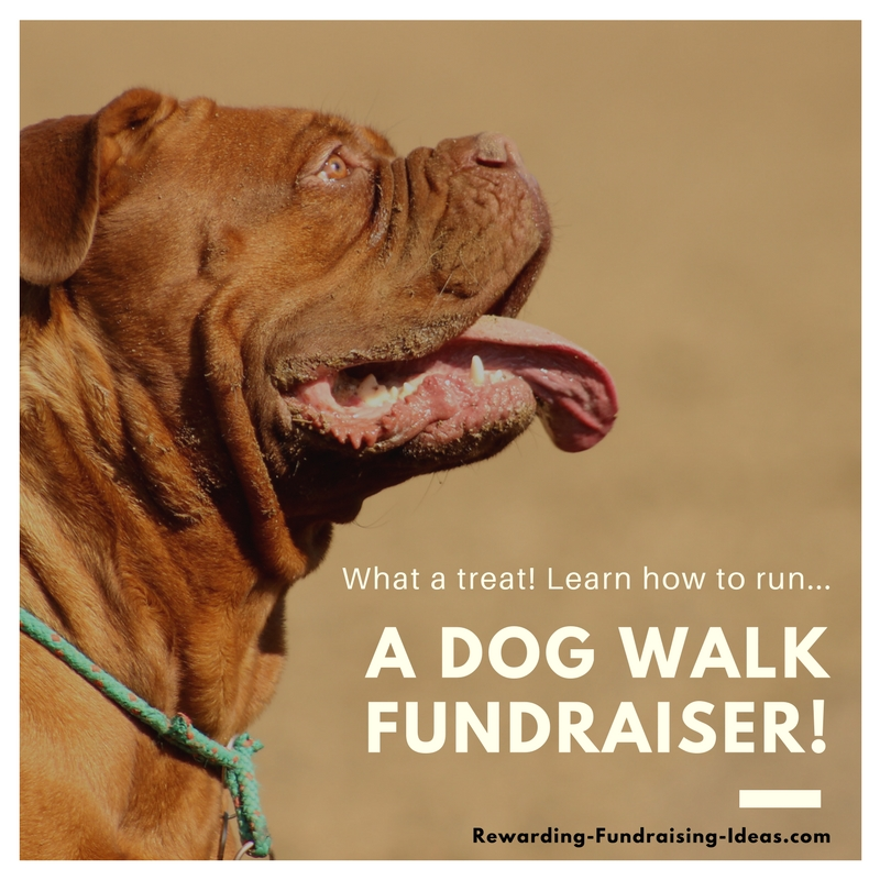 A Dog Walk Fundraiser - A Peer-to-Peer (a-Thon) style fundraising idea...
