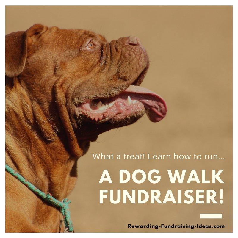 A Dog Walk Fundraiser - A Peer-to-Peer (a-Thon) style fundraising idea...
