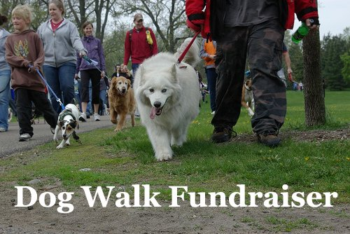 Dog Walk Fundraiser! Learn how to run one effectively!  (Photo by Andrew Ciscel / Flickr)