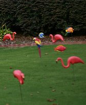 The super fun Flamingo Fundraiser. Find out how! (Photo by Nick Gray / Flickr)
